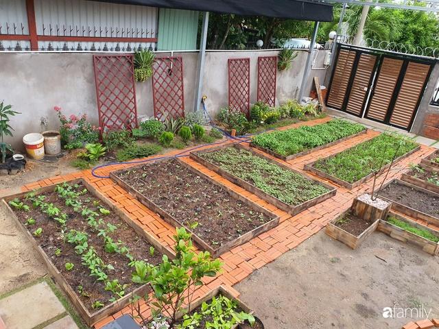 Con gái chi 500 triệu đồng xây nhà vườn container để bố về hưu thỏa mãn đam mê trồng rau ở Sài Gòn - Ảnh 7.