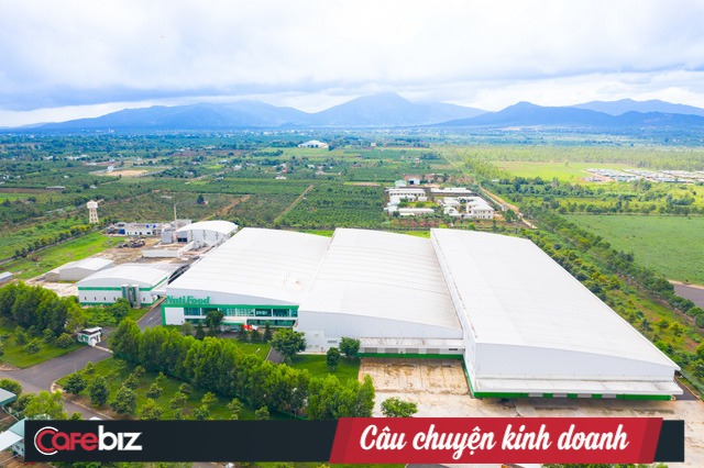 Sau 2 năm tiếp quản trang trại từ Hoàng Anh Gia Lai, NutiFood đã làm gì để xóa đi lời chê bai DN sản xuất sữa nhưng không sở hữu con bò sữa nào? - Ảnh 1.