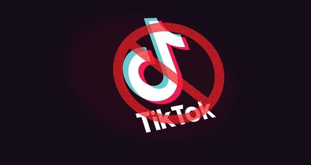 TikTok có gì đặc biệt khiến Chính phủ Mỹ và Microsoft dành nhiều sự quan tâm? - Ảnh 2.