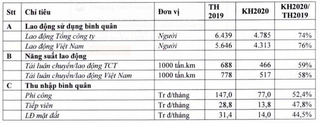 Phi công, tiếp viên Vietnam Airlines bị giảm 50% thu nhập bình quân 2020 - Ảnh 1.