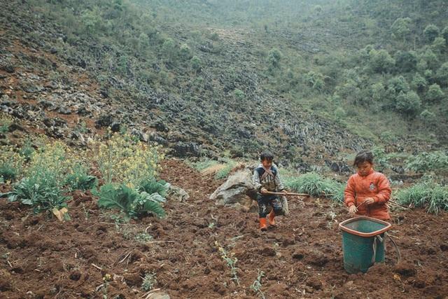 2 bé HMông cặm cụi cuốc đất, gieo hạt phụ bố mẹ và nụ cười khiến bao người tan chảy - Ảnh 12.