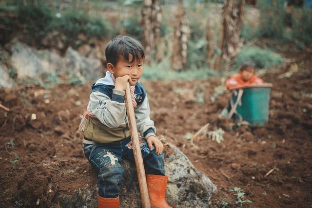 2 bé HMông cặm cụi cuốc đất, gieo hạt phụ bố mẹ và nụ cười khiến bao người tan chảy - Ảnh 6.
