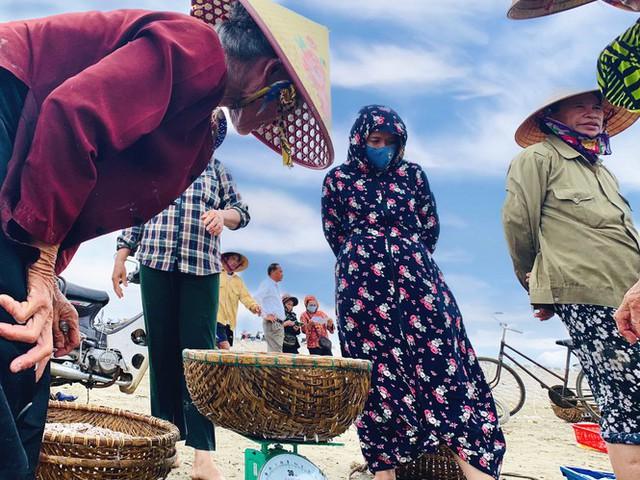 Ngư dân Hà Tĩnh trúng đậm cá cơm, mỗi ngày thu tiền triệu - Ảnh 2.