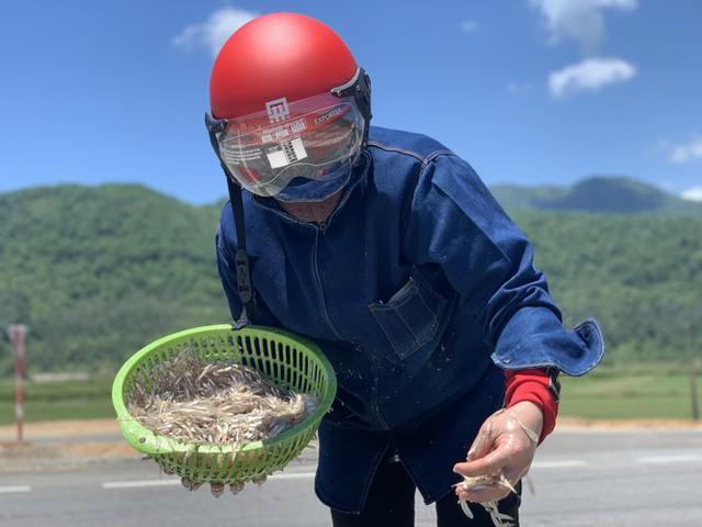 Ngư dân Hà Tĩnh trúng đậm cá cơm, mỗi ngày thu tiền triệu - Ảnh 15.