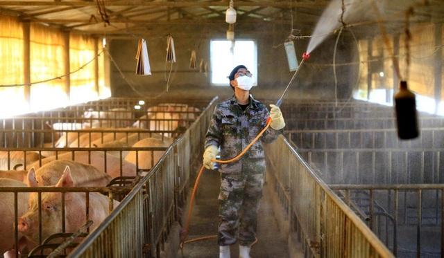 Trung Quốc cấm nhập khẩu thịt lợn từ Đức: Động thái bất ngờ làm choáng cả châu Âu - Ảnh 1.