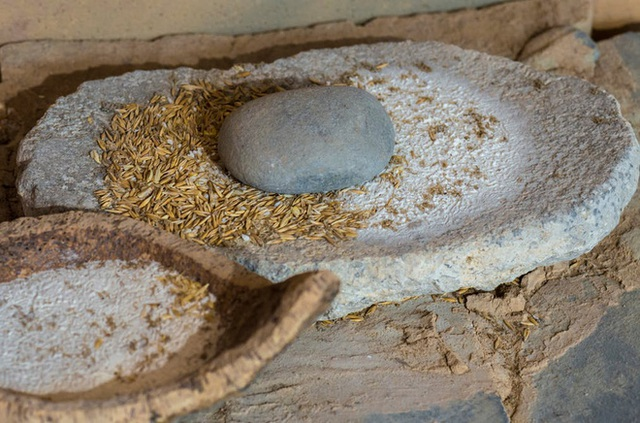 Thực phẩm siêu chế biến: Bóng ma của thời đại và vô vàn tác hại tới sức khỏe - Ảnh 1.