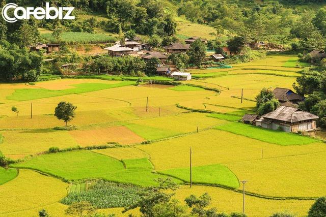 Nhật ký hành trình tới Hà Giang của cô gái yêu du lịch bụi: Làng Thiên Hương như một ngôi làng cổ tích, Du Già đẹp mê ly! - Ảnh 12.