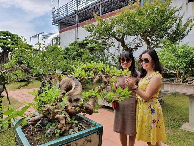 Cận cảnh khu vườn tiền tỷ của tay chơi cây cảnh nức tiếng Hà thành - Ảnh 11.