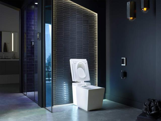 Loạt đồ nội thất nhà vệ sinh cực sang chảnh lên đến cả ngàn đô khiến ai cũng ngờ ngàng, chỉ riêng toilet cũng đắt tới khó tin - Ảnh 2.