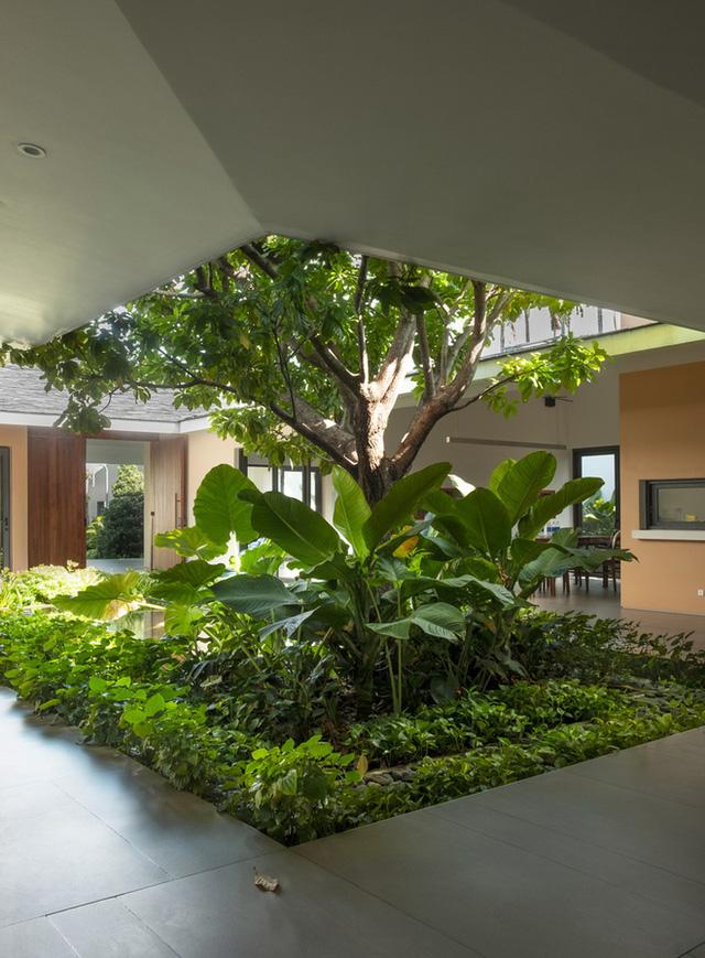 Lạ mắt với ngôi nhà 1.000 m2 tại Hóc Môn vừa xuất hiện trên báo Mỹ - Ảnh 3.