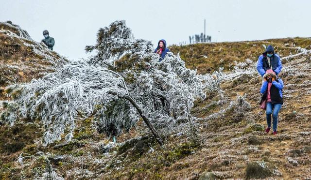 Hàng ngàn du khách bất chấp rét buốt lên đỉnh Mẫu Sơn ngắm băng tuyết - Ảnh 11.