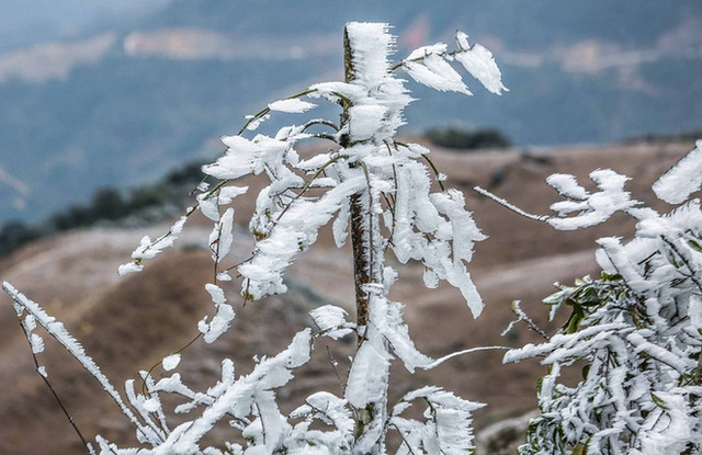 Hàng ngàn du khách bất chấp rét buốt lên đỉnh Mẫu Sơn ngắm băng tuyết - Ảnh 16.