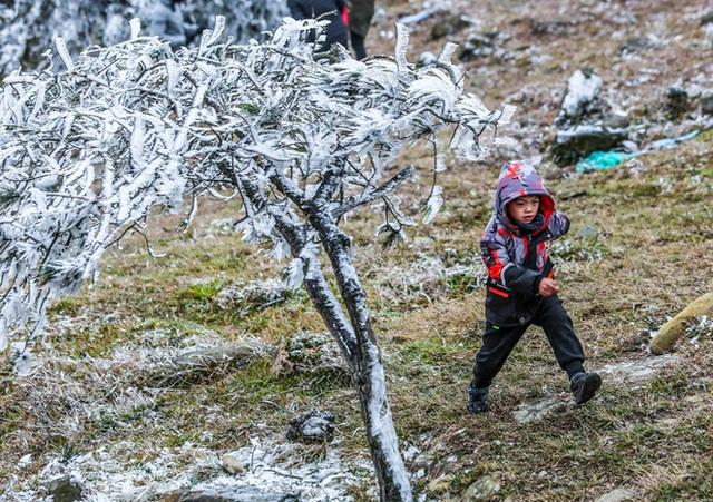 Hàng ngàn du khách bất chấp rét buốt lên đỉnh Mẫu Sơn ngắm băng tuyết - Ảnh 3.