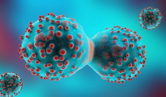 Sốc với các thủ thuật tinh quái của tế bào ung thư: Chuyển trạng thái dễ nuôi và giả vờ biến mất... - Ảnh 2.