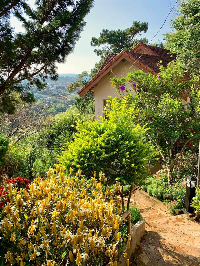 Rời Sài Gòn, cặp vợ chồng lên Đà Lạt xây ngôi nhà hướng mặt ra thung lũng, nhìn vườn hoa đào đẹp như cổ tích mà mê mệt - Ảnh 12.