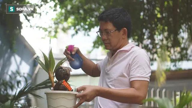Sọ dừa bỏ đi được biến thành trâu cõng vàng, giá tiền triệu - Ảnh 2.