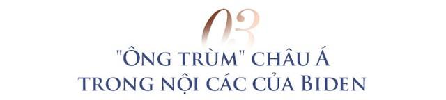 Triển vọng quan hệ Việt - Mỹ trong 4 năm tới và kỷ niệm với ông trùm châu Á trong nội các của Tổng thống Biden - Ảnh 6.