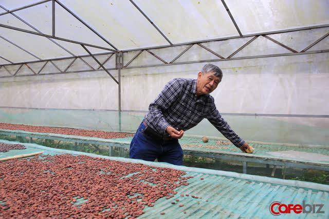 Tiến sĩ về làm nông dân: Hồi sinh đồi đá trơ trọi nhờ cỏ dại, trồng cacao không hoá chất tạo dòng socola đắt nhất Việt Nam - Ảnh 9.