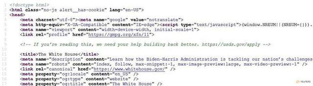 Độc đáo cách chính phủ Mỹ tuyển coder: Ẩn đoạn mã bí mật bên trong website, ai phát hiện ra sẽ cơ hội làm việc - Ảnh 1.