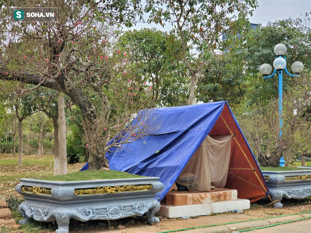 Dựng lều dã chiến trong tiết trời lạnh 8 độ bán đào cảnh trăm triệu, hàng khủng chơi Tết - Ảnh 6.