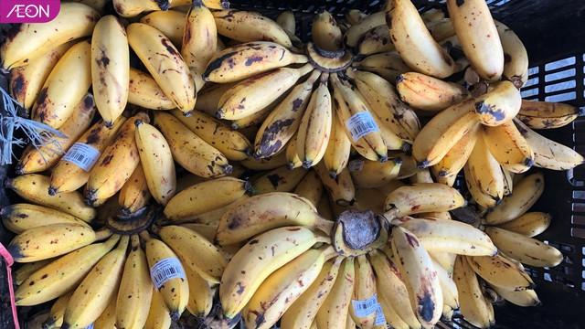AEON Việt Nam hỗ trợ thức ăn cho các loài động vật ở Thảo Cầm Viên, mỗi tuần 400kg - Ảnh 5.