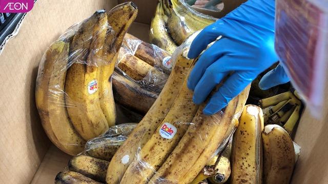 AEON Việt Nam hỗ trợ thức ăn cho các loài động vật ở Thảo Cầm Viên, mỗi tuần 400kg - Ảnh 8.
