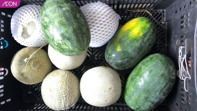 AEON Việt Nam hỗ trợ thức ăn cho các loài động vật ở Thảo Cầm Viên, mỗi tuần 400kg - Ảnh 6.