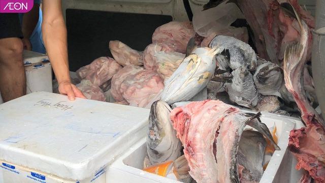 AEON Việt Nam hỗ trợ thức ăn cho các loài động vật ở Thảo Cầm Viên, mỗi tuần 400kg - Ảnh 7.