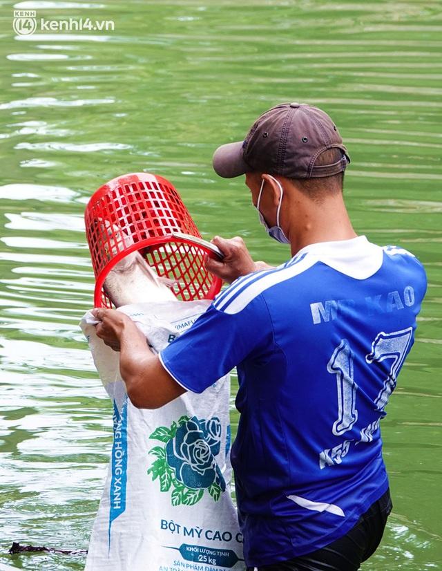 Hà Nội: Sông Tô Lịch bất ngờ chuyển màu xanh ngắt, người dân mang theo bao bắt hàng trăm cân cá đem về - Ảnh 11.
