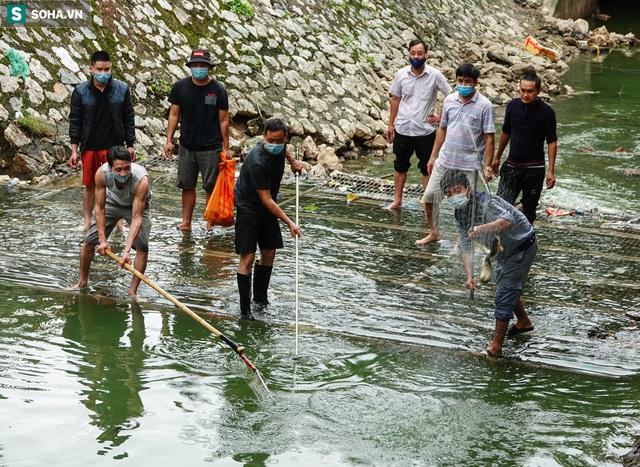 [ẢNH] Cận cảnh dòng nước xanh ngắt hiếm thấy tại sông Tô Lịch, cá bơi nhộn nhịp hàng đàn - Ảnh 10.