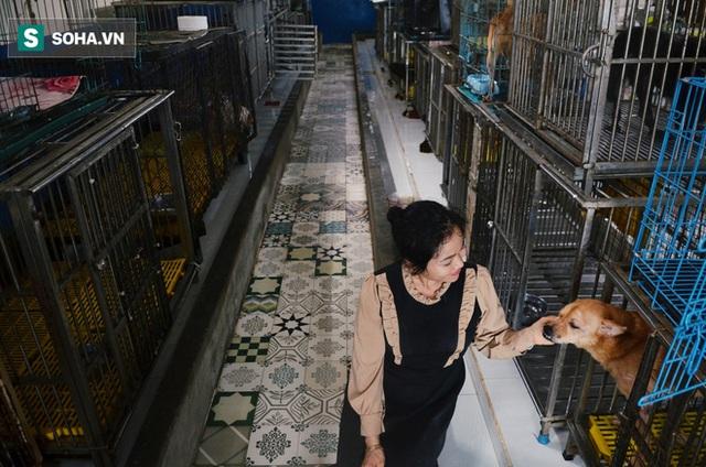 Cặp vợ chồng cưu mang 100 con chó, mèo bị chủ F0 bỏ rơi mùa dịch: 'Chúng tôi không sinh con để chu toàn cho tụi nhỏ' - Ảnh 13.