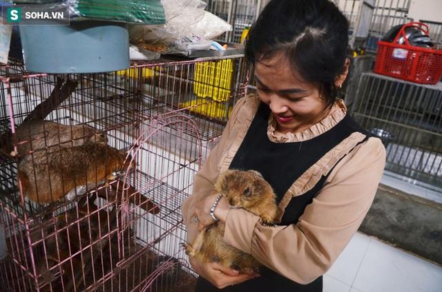 Cặp vợ chồng cưu mang 100 con chó, mèo bị chủ F0 bỏ rơi mùa dịch: 'Chúng tôi không sinh con để chu toàn cho tụi nhỏ' - Ảnh 14.