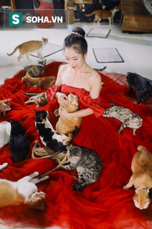 Cặp vợ chồng cưu mang 100 con chó, mèo bị chủ F0 bỏ rơi mùa dịch: 'Chúng tôi không sinh con để chu toàn cho tụi nhỏ' - Ảnh 16.