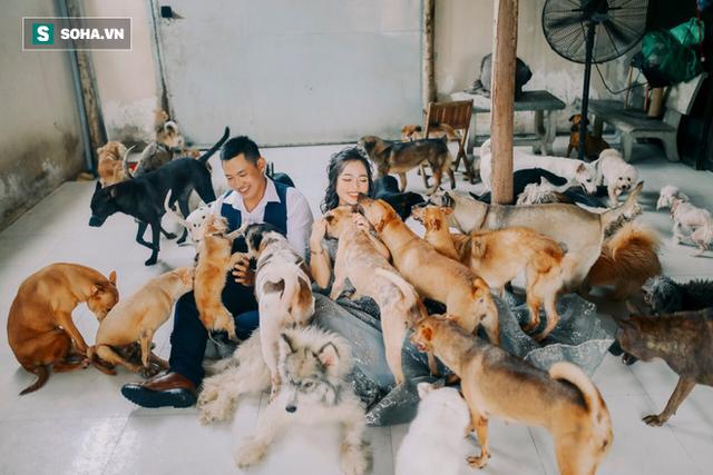 Cặp vợ chồng cưu mang 100 con chó, mèo bị chủ F0 bỏ rơi mùa dịch: 'Chúng tôi không sinh con để chu toàn cho tụi nhỏ' - Ảnh 4.