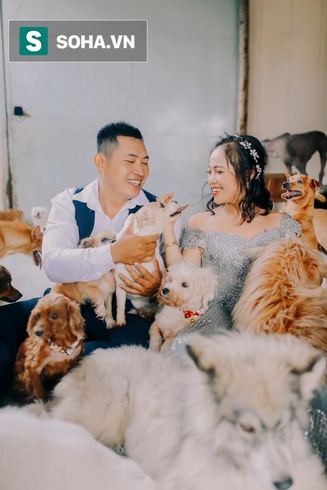 Cặp vợ chồng cưu mang 100 con chó, mèo bị chủ F0 bỏ rơi mùa dịch: 'Chúng tôi không sinh con để chu toàn cho tụi nhỏ' - Ảnh 6.