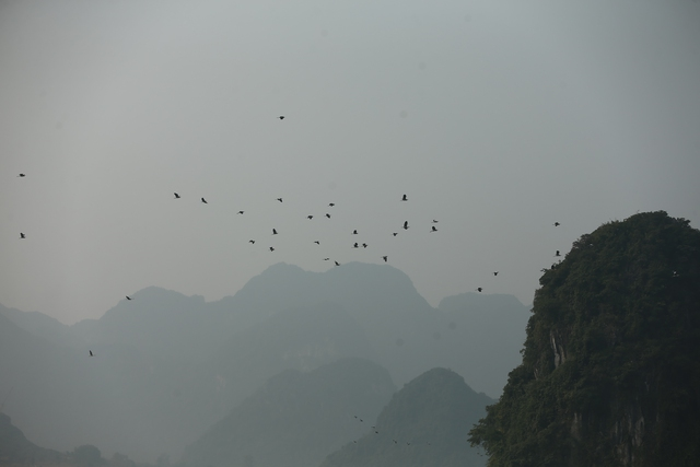 Vẻ đẹp trầm mặc và nên thơ của chùa Tam Chúc - Ảnh 4.