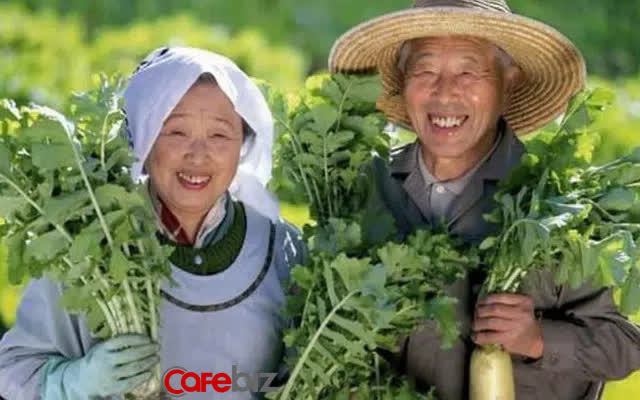 Hệ thống y tế của Nhật Bản đứng đầu thế giới, có 10 phương pháp cực kì đơn giản giúp sống lâu sống thọ mà chúng ta thực sự nên học hỏi - Ảnh 2.