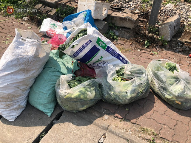Hanoians teamed up with sunshine and warmly to rescue farmers in Hai Duong: 15 tons of vegetables were sold out within a few hours - Photo 9.