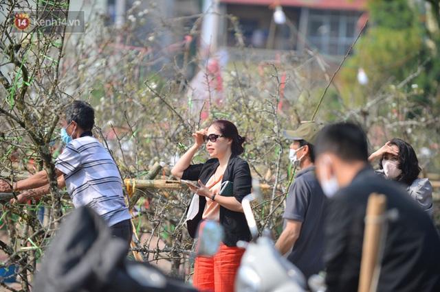 Ảnh: Hàng trăm người dân Hà Nội đổ xô đi mua hoa lê về chơi Rằm tháng Giêng - Ảnh 11.