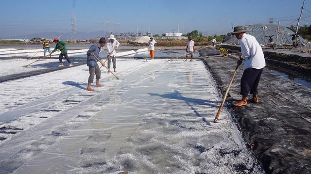 Cận cảnh nghề gieo nước biển đầu năm ở phương Nam - Ảnh 3.