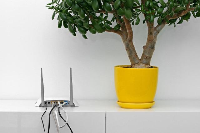 Đừng đặt router Wi-Fi ở 3 vị trí này trong nhà, nếu không tốc độ 100 Mbps cũng hóa rùa bò - Ảnh 3.