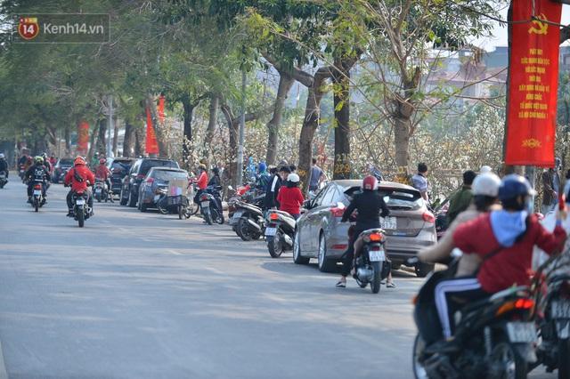 Ảnh: Hàng trăm người dân Hà Nội đổ xô đi mua hoa lê về chơi Rằm tháng Giêng - Ảnh 4.