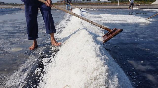 Cận cảnh nghề gieo nước biển đầu năm ở phương Nam - Ảnh 8.