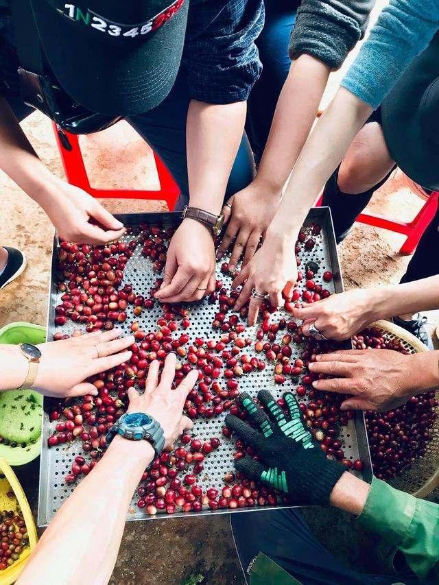 Vì sao thế giới dậy sóng cà phê Việt Nam? - Ảnh 2.