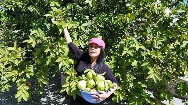 Nữ danh hài giàu nhất Vbiz Việt Hương: Cho thuê 8 căn hộ V.homes, thường xuyên thay đổi xế hộp, mua quá nhiều hột xoàn tới mức không muốn đeo - Ảnh 3.