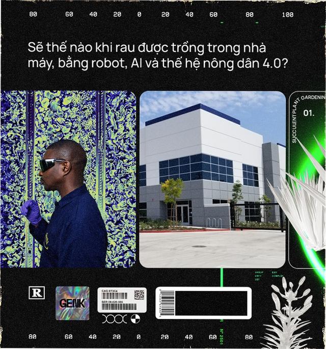 Sẽ thế nào khi rau được trồng trong nhà máy, bằng robot, AI và thế hệ nông dân 4.0? - Ảnh 3.