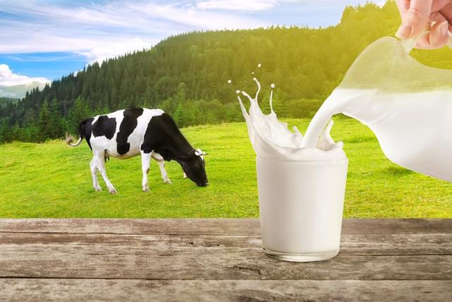 Vì sao không nên pha cà phê với sữa đặc, đường trắng? Top 5 nguyên liệu pha cà phê hại sức khỏe nhất - Ảnh 6.