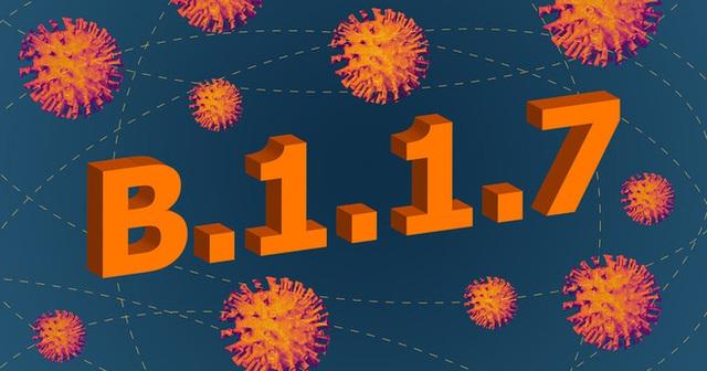 Giải mã từng chữ số trong tên biến thể virus SARS-CoV-2: B.1.1.7, B.1.351 nghĩa là gì? - Ảnh 3.