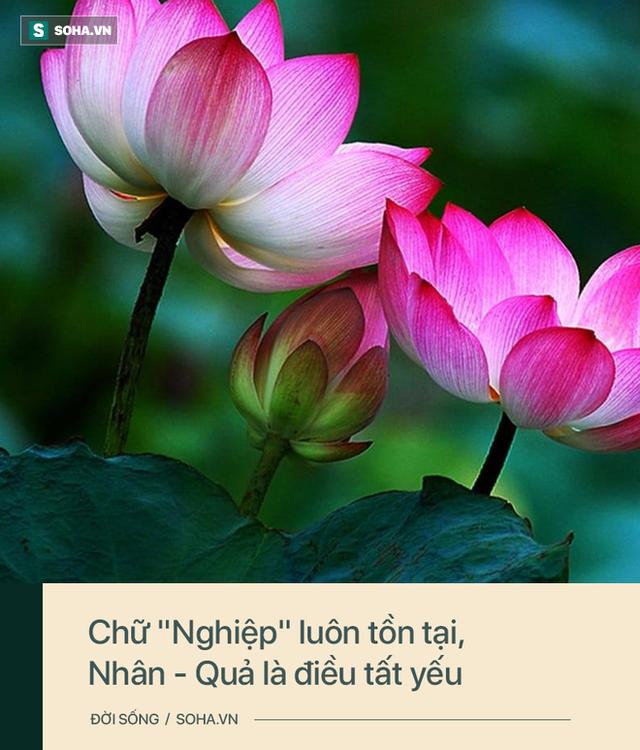 Phật giáo chỉ ra 4 kiểu người phúc mỏng mệnh khổ: Hãy xem bạn có nằm trong số đó hay không - Ảnh 1.