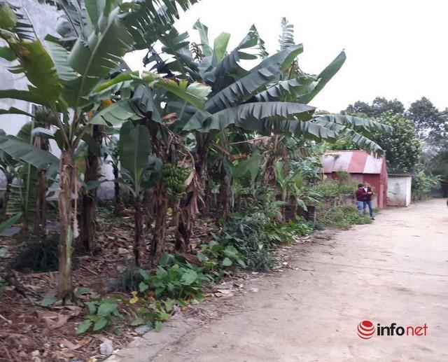 Giá đất Hà Nội dù lên đồng, ít giao dịch sớm muộn cũng sẽ tụt dốc - Ảnh 1.